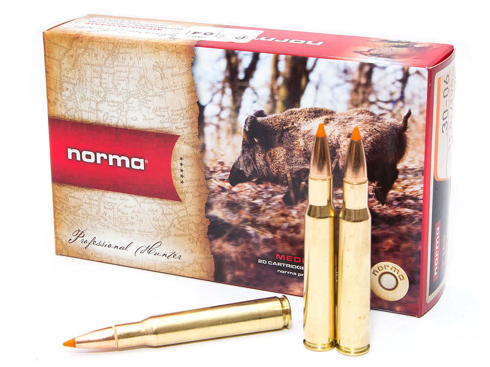 .30-06 Norma 11.0 Tipstrike
